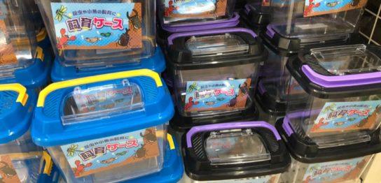 昆虫用の容器